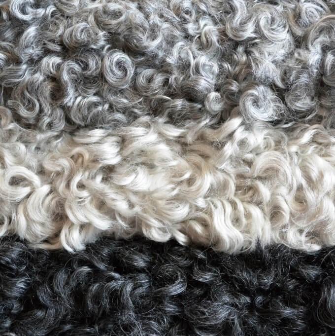 Gotland Sheep Skin